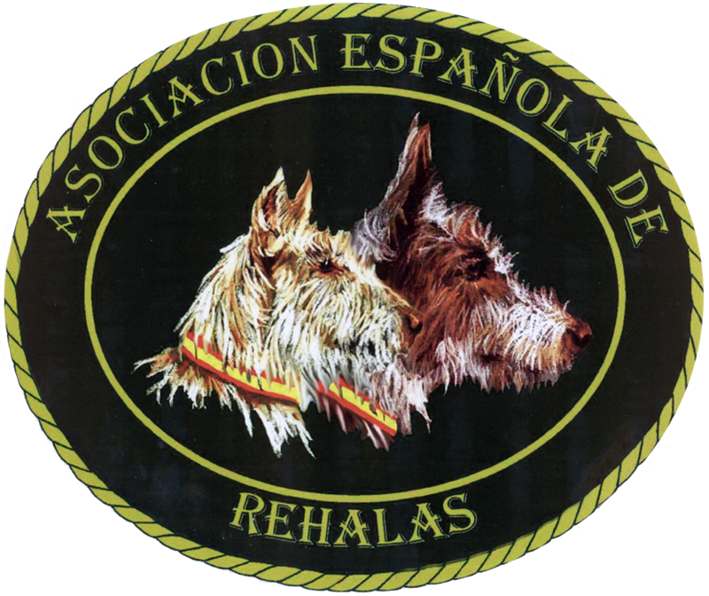 Nueva Ley de bienestar de Castilla La Mancha